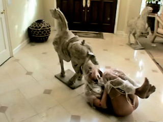 Scorching hot European playgirl gets tied up and fucked in public