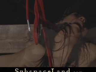 Taken in servitude  cute Miho Lechter struggles below Master's kinky..